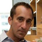 Professor Michael Fischbach